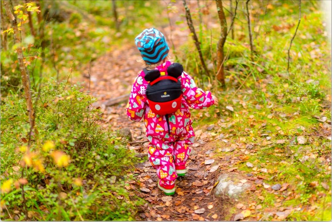 Dlaczego ważne są spacery dla dziecka w wieku przedszkolnym?